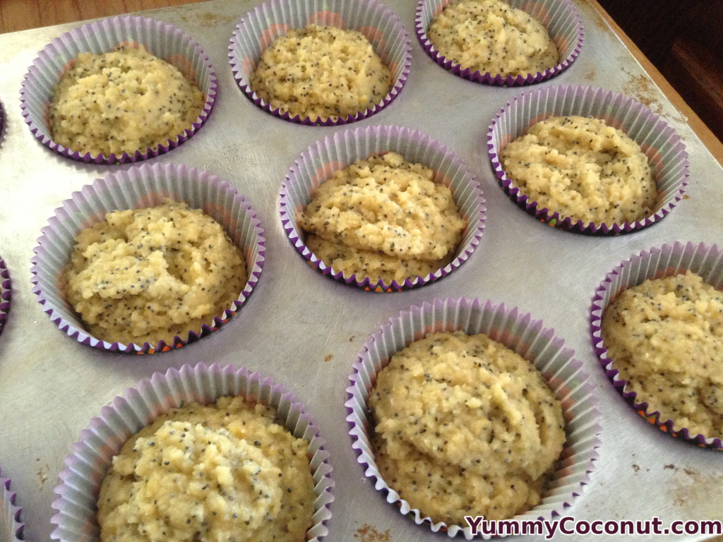 cocnut flour lemon poppy seed muffins unbaked in cups