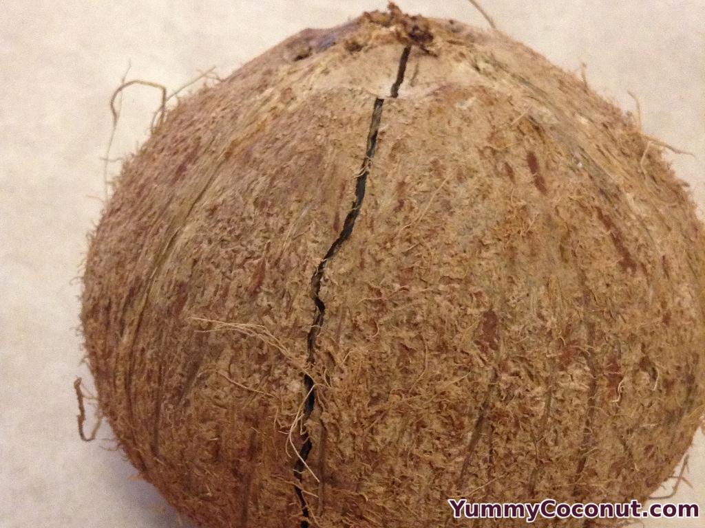htoc coconut cracked